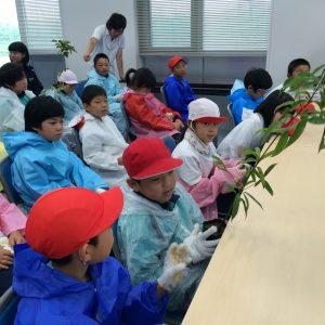 宮城県柴田農林高校・川崎町立川崎第二小学校の皆様で講習会を行いました
