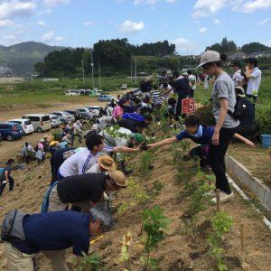 岩手県山田町で植樹祭を開催しました!