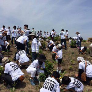 竹中工務店社員組合の皆様で植樹を行いました
