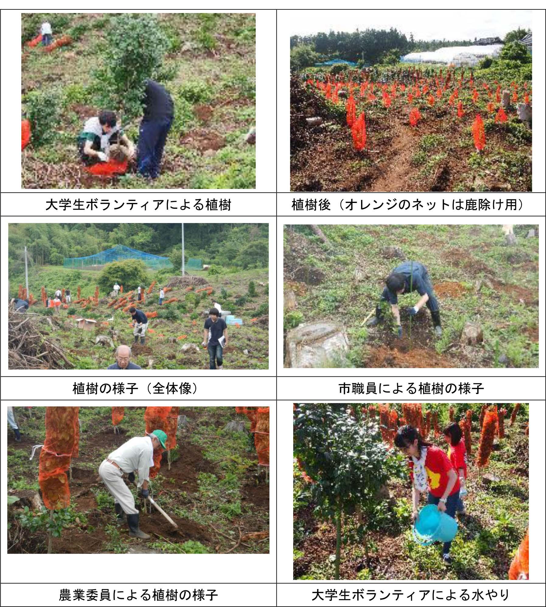 大船渡市農業委員会平成28年度農地の日植樹会写真