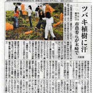 岩手県大船渡市にヤブツバキの苗を寄贈しました。