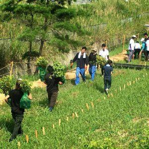 どんどんの森植樹祭 学生ボランティアが頑張ってくれました!
