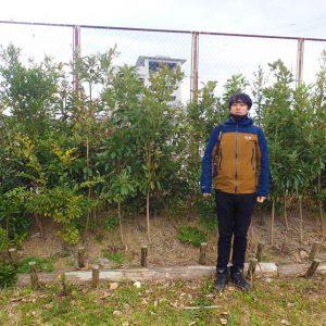 植樹地だよりin高知県南国市大湊小学校