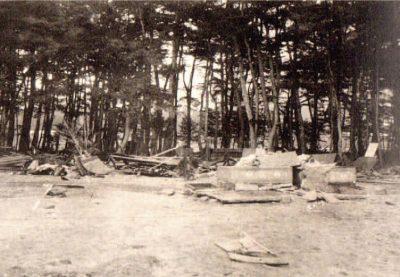 三陸沖地震、高田松原、防潮林、津波被害