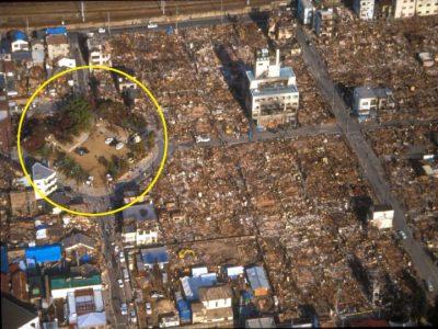 阪神淡路大震災。火災の延焼を食い止めた大国公園の樹林帯