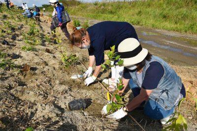 宮城県岩沼市千年希望の丘植樹祭2021