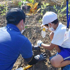 大阪府岬町多奈川小学校「岬町いのちを守る植樹祭」開催しました!